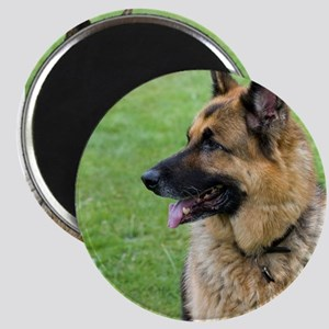 German Shepherd Profile Magnets