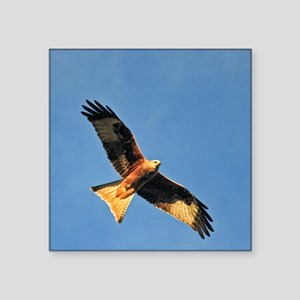 Flying Red Kite Sticker