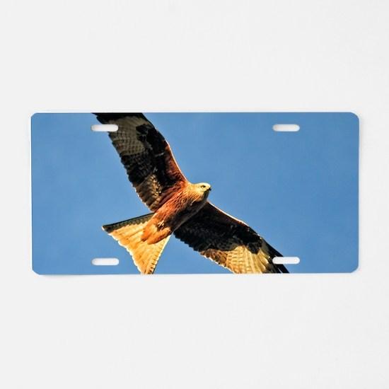 Flying Red Kite Aluminum License Plate
