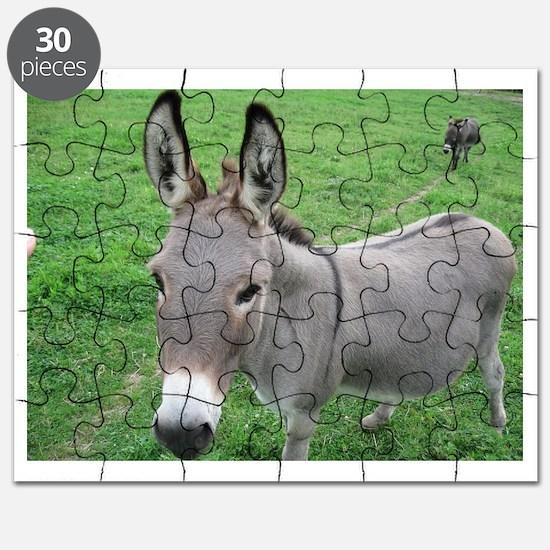 Miniature Donkey Puzzle