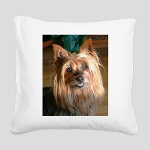 Australian Silky Terrier headstudy Square Canvas P