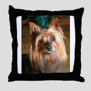 Australian Silky Terrier headstudy Throw Pillow