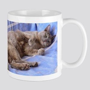 Blue Tortoiseshell Burmese Cat Mugs