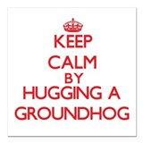 Groundhog day Square Car Magnets