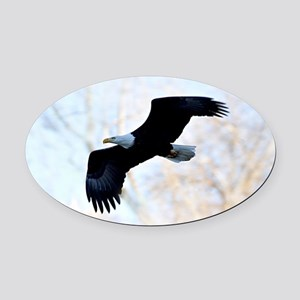 Bald Eagle Oval Car Magnet