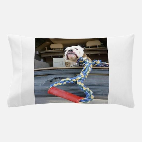 English bulldog with tug toy Pillow Case