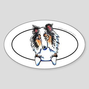 Blue Merle Sheltie Peeking Sticker