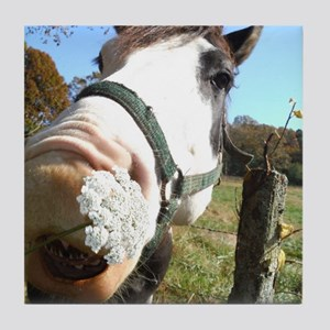 White and Brown horse wildflowers Tile Coaster