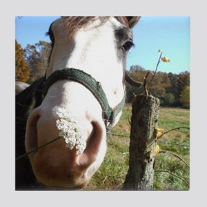 White & Brown horse wildflowers Tile Coaster
