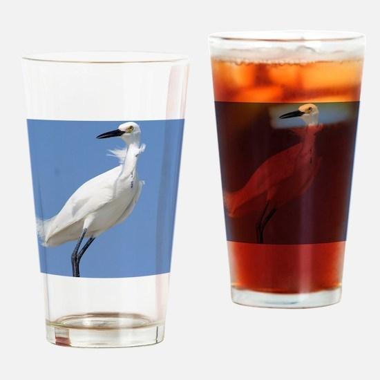 Cute Snowy egret beach Drinking Glass