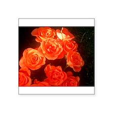 Roses Sticker