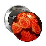 Roses 2.25