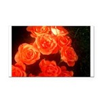 Roses Rectangle Car Magnet