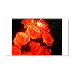 Roses Car Magnet 20 x 12