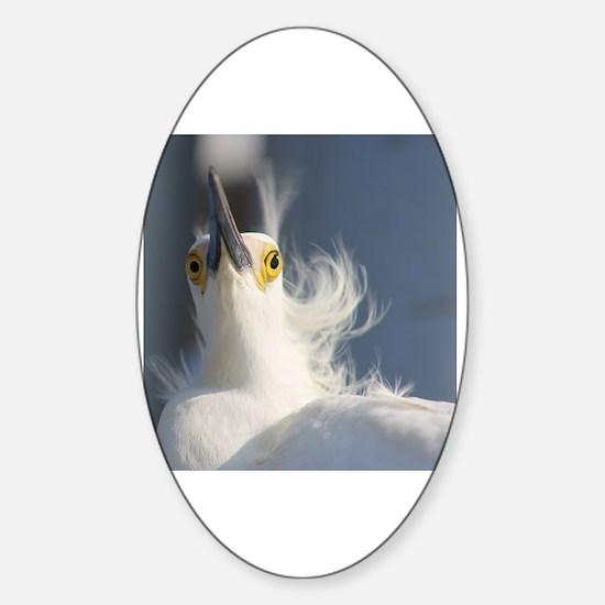 Cute Snowy egret beach Sticker (Oval)
