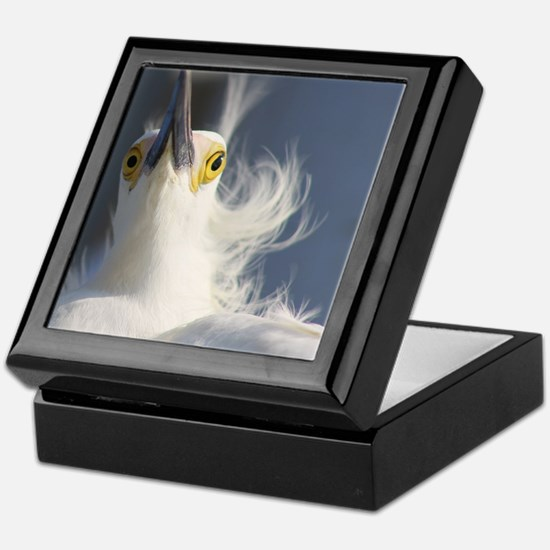 Cute Snowy egret beach Keepsake Box