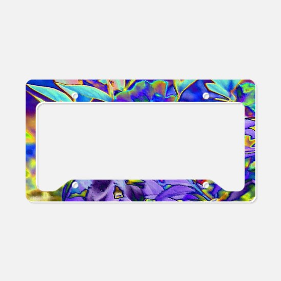 Foiled Garden Special Effects License Plate Holder