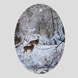 A Winter Wonderland Oval Ornament