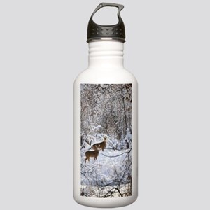 A Winter Wonderland Stainless Water Bottle 1.0L