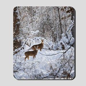 A Winter Wonderland Mousepad