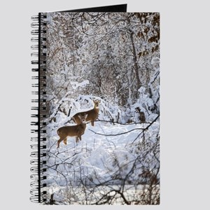 A Winter Wonderland Journal