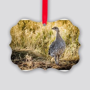 Sharp-Tailed Grouse Picture Ornament
