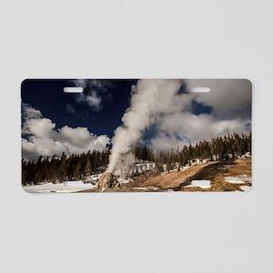 Incredible Aluminum License Plate