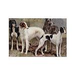 Sighthound Magnets 10 PK