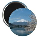 "Mt.Fuji and Sakura 2.25"" Magnet (10 pack)"