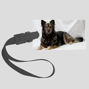 Maia--Keeshond/Cattle Dog/Border Large Luggage Tag