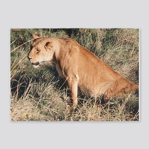 the lioness 5'x7'Area Rug