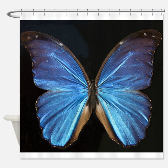 Elegant Blue Butterfly Shower Curtain