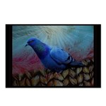 Mrs. Walter Pigeon Postcards (Package Of 8)