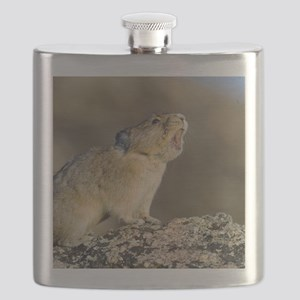 Hitting the High Note! Flask