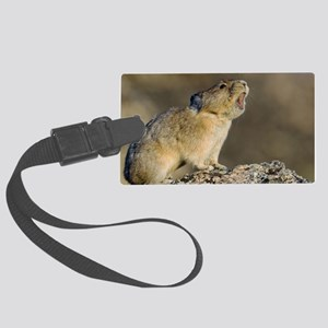 Hitting the High Note! Large Luggage Tag