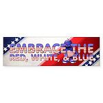 Embrace the USA Sticker (Bumper)