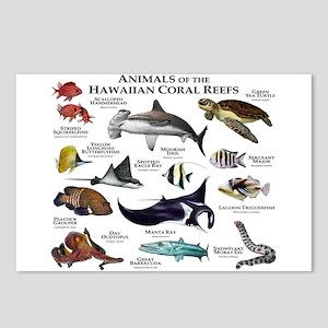 Animals of the Hawaiian Island Coral Reefs Postcar