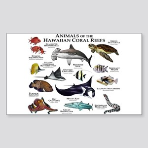 Animals of the Hawaiian Island Coral Reefs Sticker