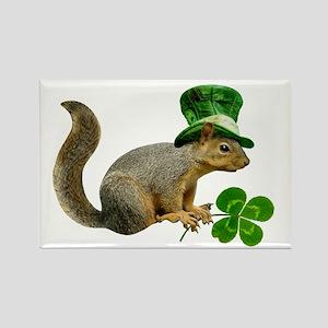 Leprechaun Squirrel Rectangle Magnet