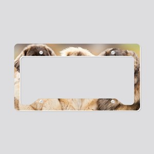 Leonberger License Plate Holder