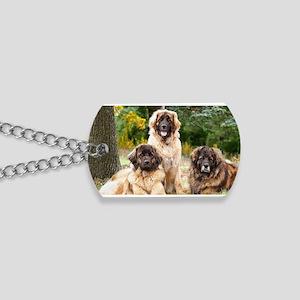 leonberger Dog Tags