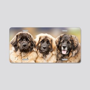 Leonberger Aluminum License Plate