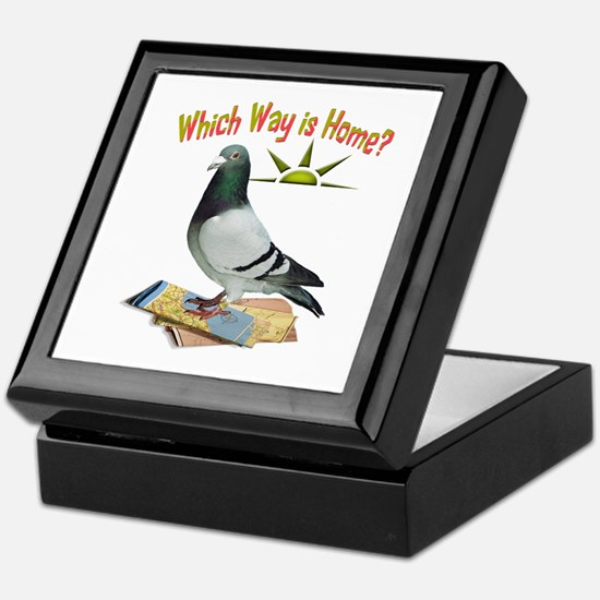 Which Way Is Home? Fun Lost Pigeon Art Keepsake Bo