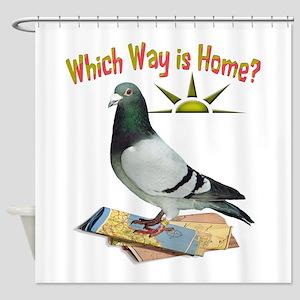 Which Way is Home? Fun Lost Pigeon Art Shower Curt