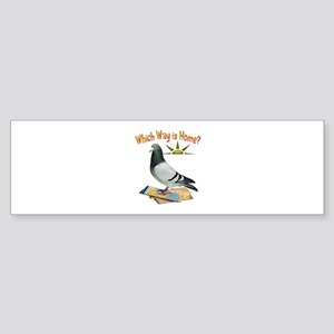 Which Way Is Home? Fun Lost Pigeon Art Bumper Stic