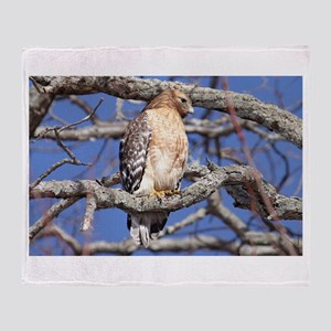 Red Tailed Hawk Laptop and Household Throw Blanket