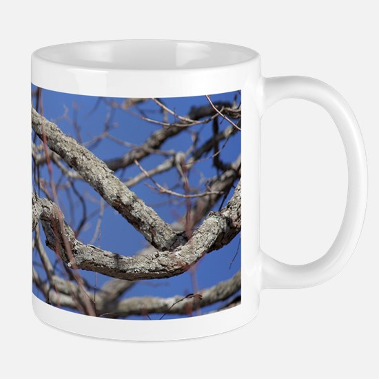 Red Tailed Hawk Mug Mugs