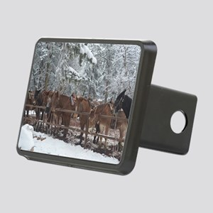 Stables at the Grand Canyo Rectangular Hitch Cover