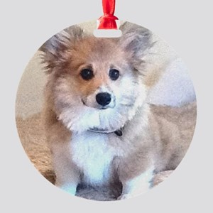 Too Cute Corgi puppy Ornament