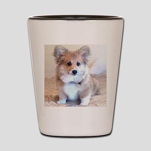 Too Cute Corgi puppy Shot Glass